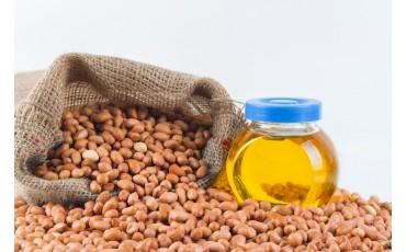 What makes Groundnut oil popular?