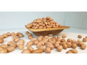 Groundnuts / Peanuts
