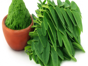Moringa Leaves Raw Powder - 200 grams