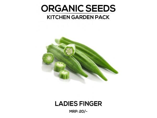 Ladies Finger Seeds
