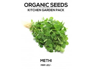 Methi Seeds