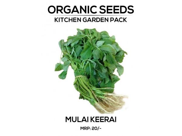 Mulai Keerai Seeds