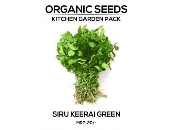 Siru Kerrai Seeds