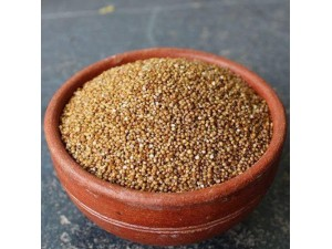 Unpolished Kodo Millet